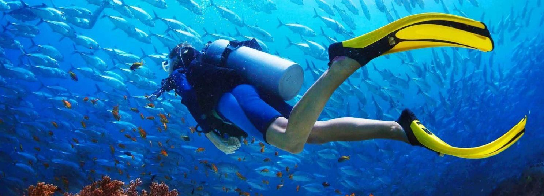 Scuba Diving Basic Package