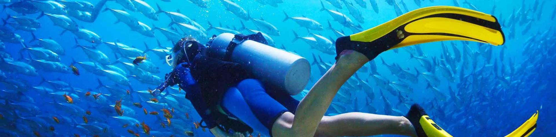 Scuba Diving Package